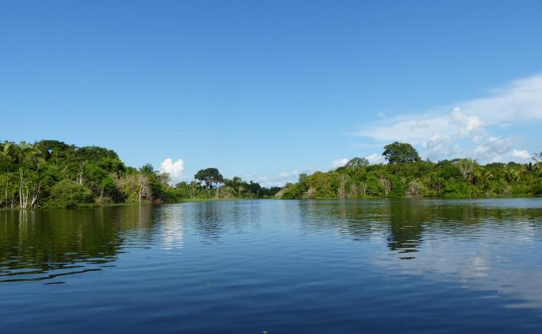 Abacate, Ilha Ituquara, détroit de Brèves