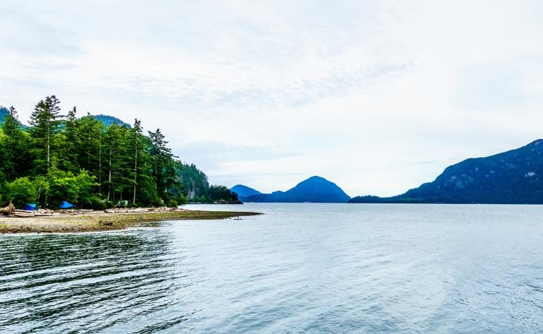 Croisière en zodiac dans la baie de Howe Sound (2h)